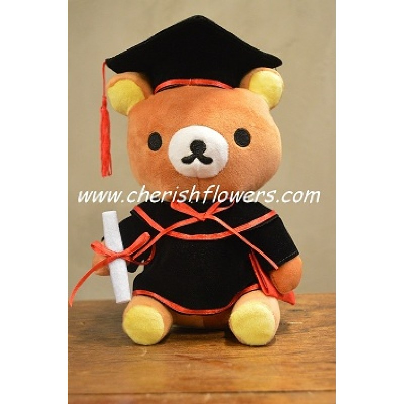 AOT13 - GRADUATION BEAR