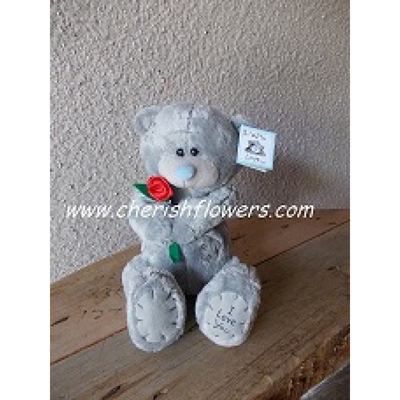 AOT01 - GREY BEAR HOLD ROSE