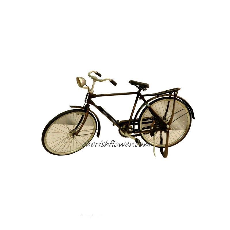XG07 - Good Old Bicycle