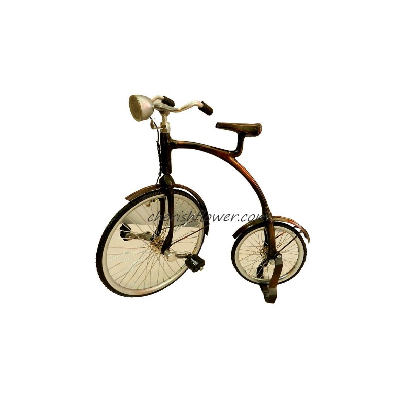XG08 - Penny-Farthing Bike