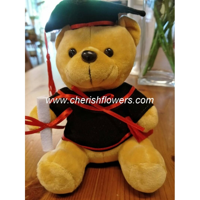 AOT26 - GRADUATION TEDDY