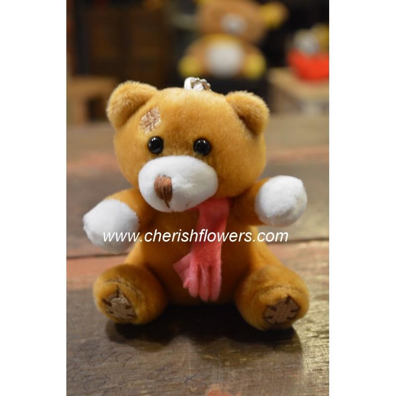 AOT10- Little Bear